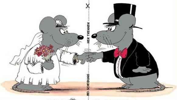 Hochzeitswitze Lustige Spruche Zu Hochzeit Ehe Schwiegermuttern